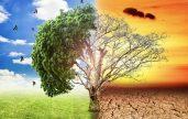 Những dấu hiệu nhận biết biến đổi khí hậu toàn cầu
